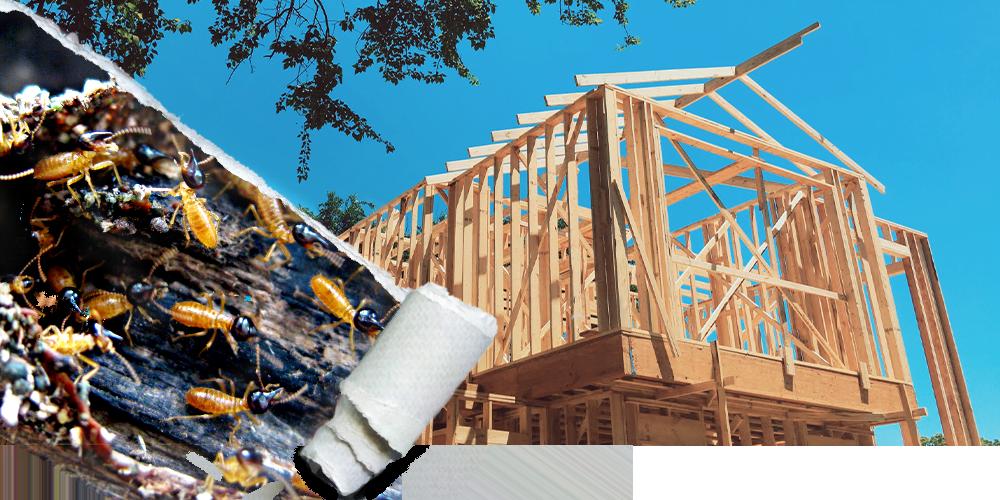 Termite-pre-and-post-construction